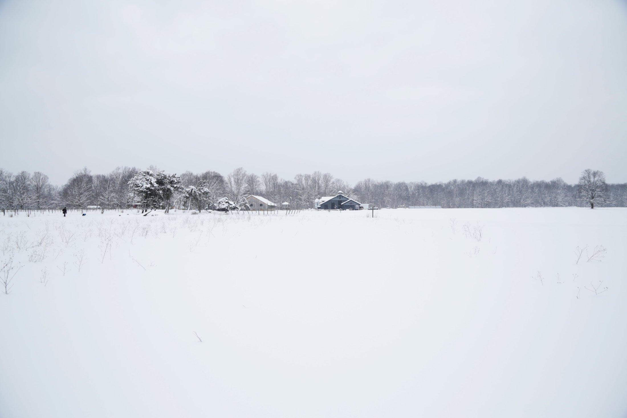 Winter Landscape-min