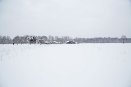 Winter Landscape-min